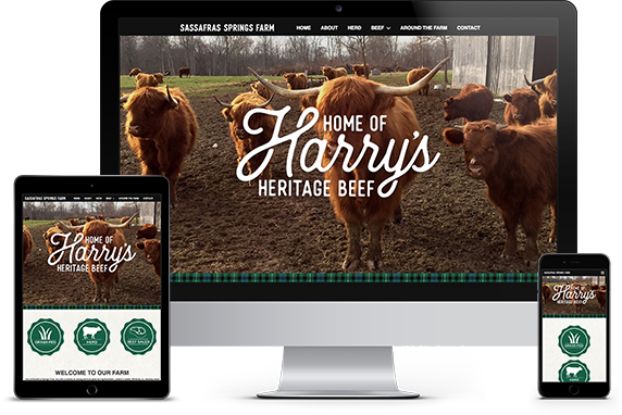 Harrys Heritage Beef