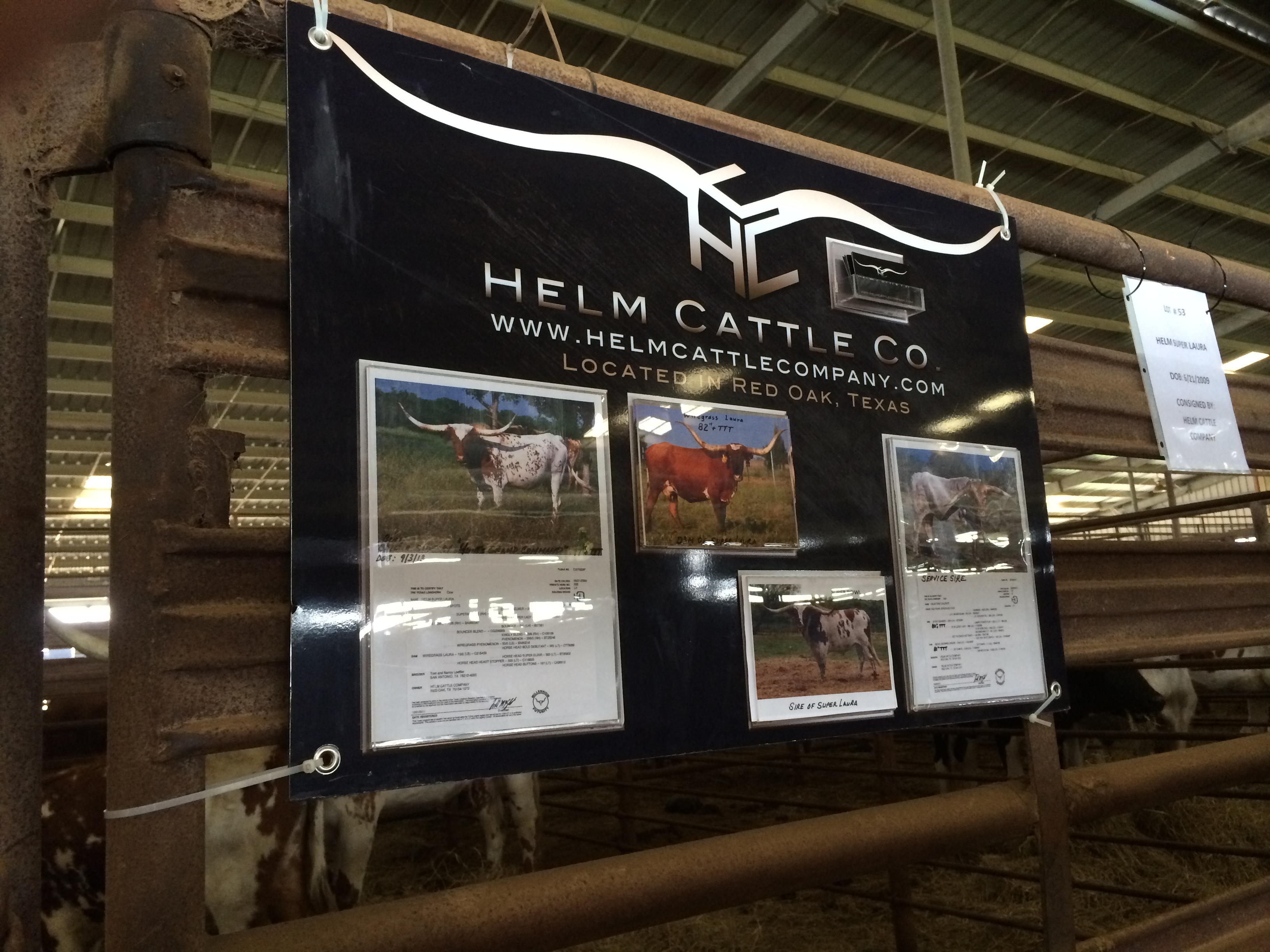 Helm Sale Pen Display