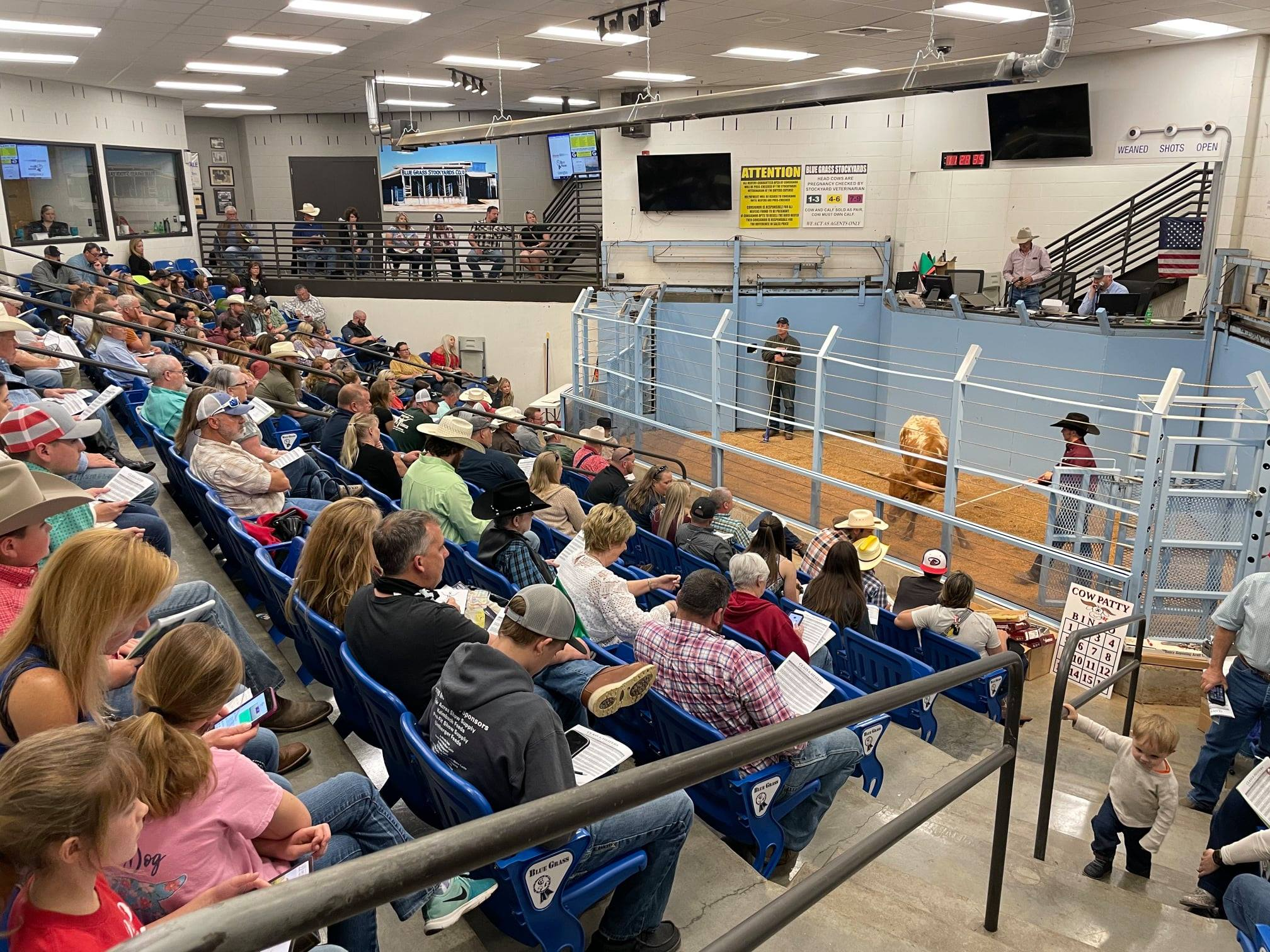 Southeastern Futurity with a full house