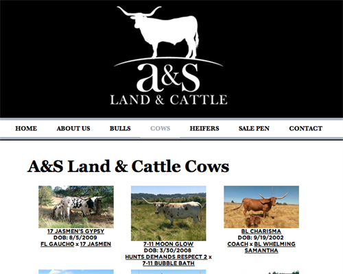 A&S Land & Cattle herd