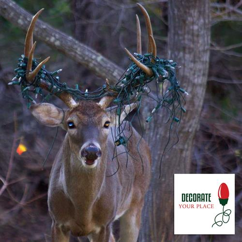 Deer with Christmas lights