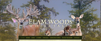 Elam Woods header