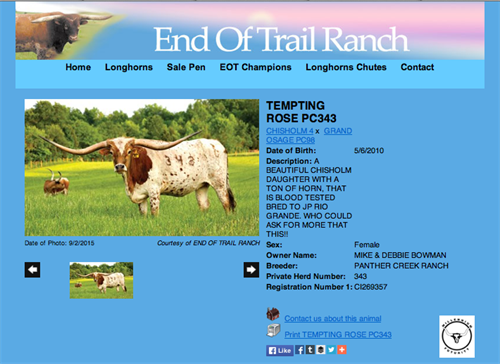 End of Trail Ranch