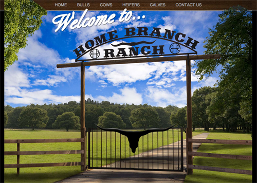 Home Branch Ranch-home
