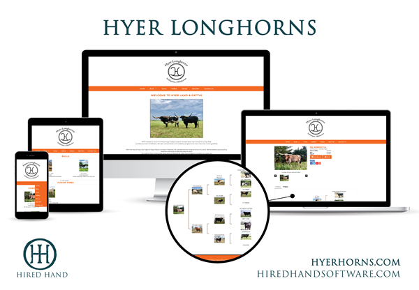 HyerLonghorns_WebsiteLaunch-01