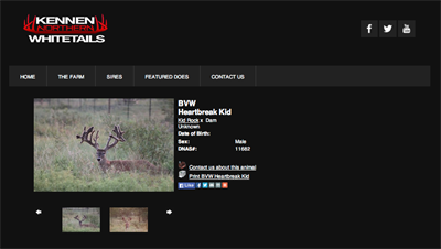 Kennen Whitetails buck page