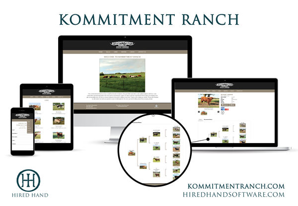 Kommitment_WebsiteLaunch-01