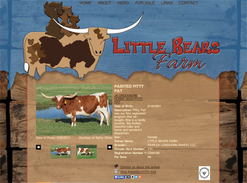 Little Bears Farm Animal