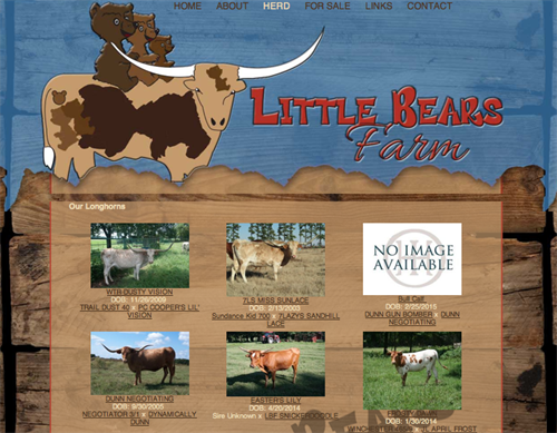 Little Bears Farm Herd