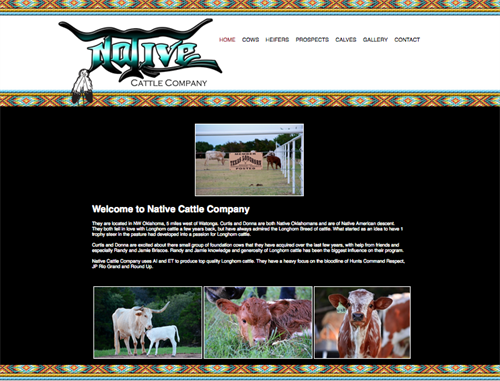 Native Cattle Co-home
