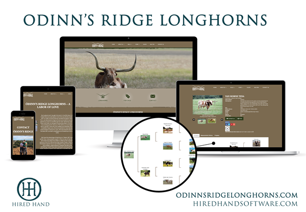 OdinnsRidge_WebsiteLaunch-01