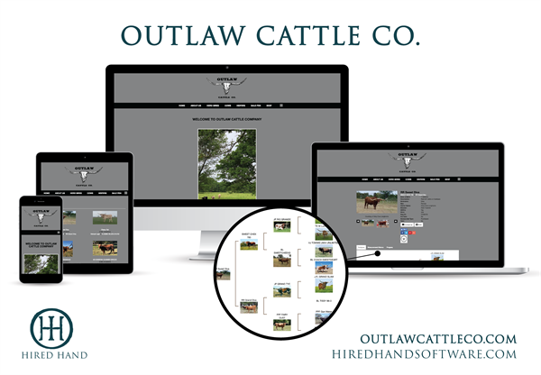 OutlawCattleCo_WebsiteLaunch-01