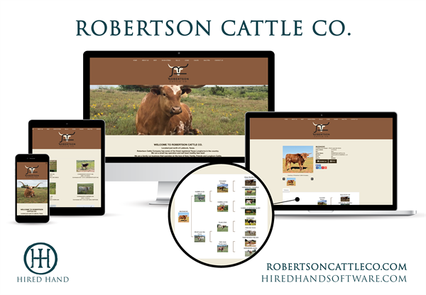 RobertsonCattleCo_WebsiteLaunch-01