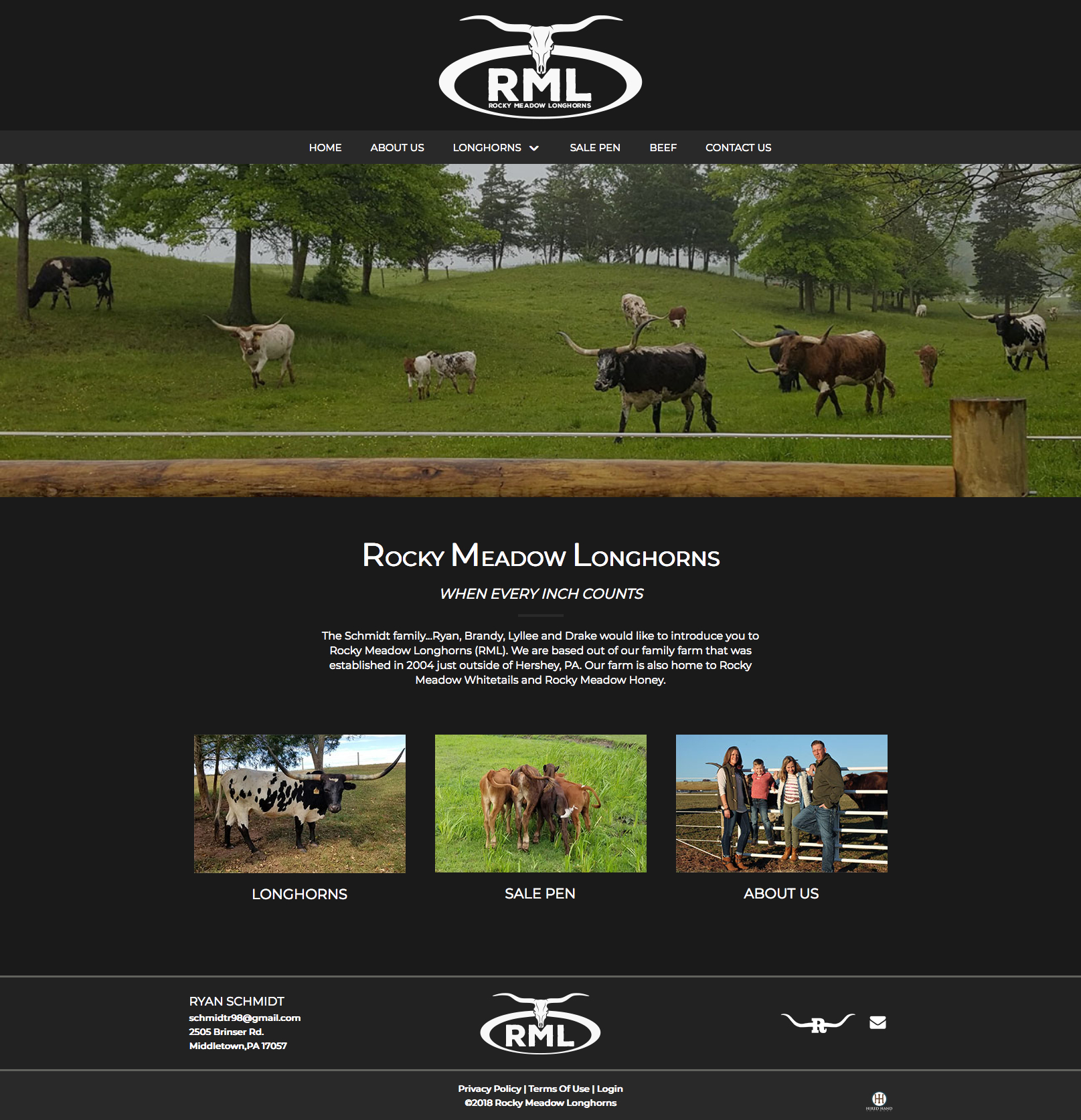rocky-meadow-longhorns_homepage