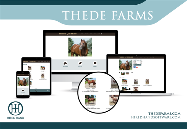 ThedeFarms_WebsiteLaunch-02