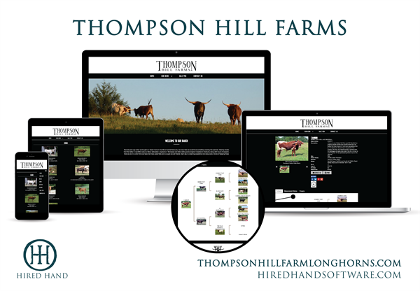 ThompsonHill_WebsiteLaunch-01
