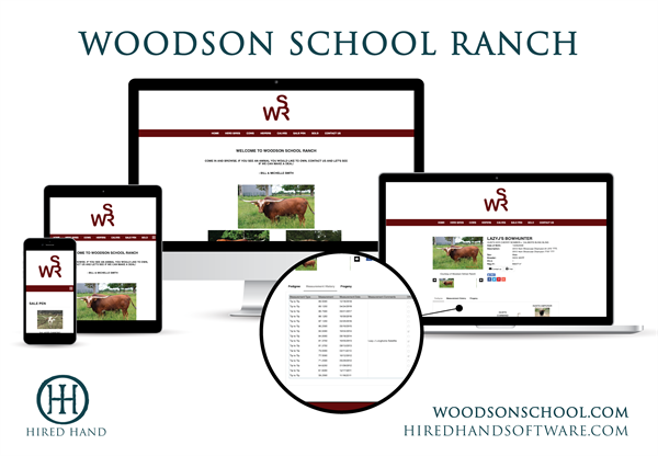 WoodsonSchool_WebsiteLaunch-01